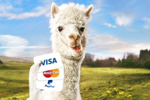 PlayOJO Casino Payment Methods